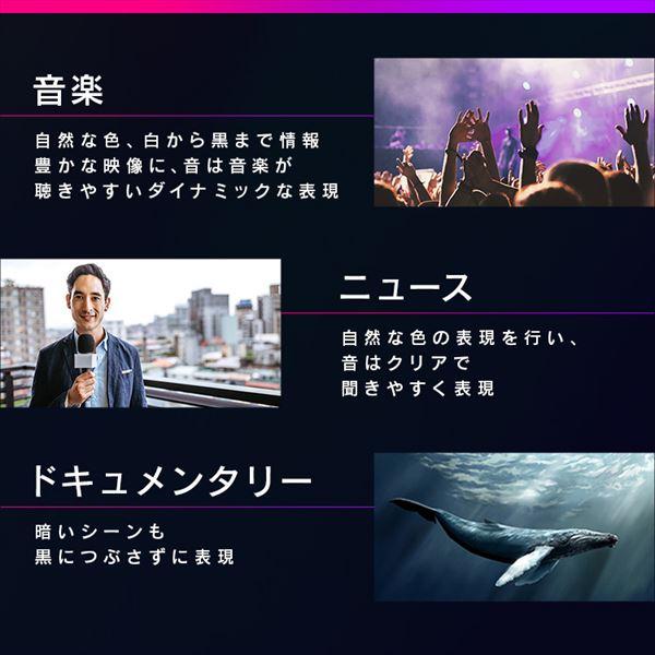 アイリスオーヤマ テレビ AI機能